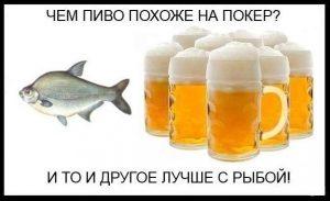 pivo_poker_ryba